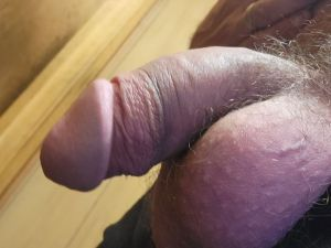 Lsausage's Cock image