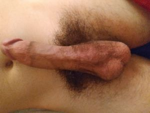 cock of Hot_Rod